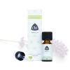 Lavendel, biologisch, CO2 extract