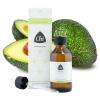 Avocado plant olie, biologisch