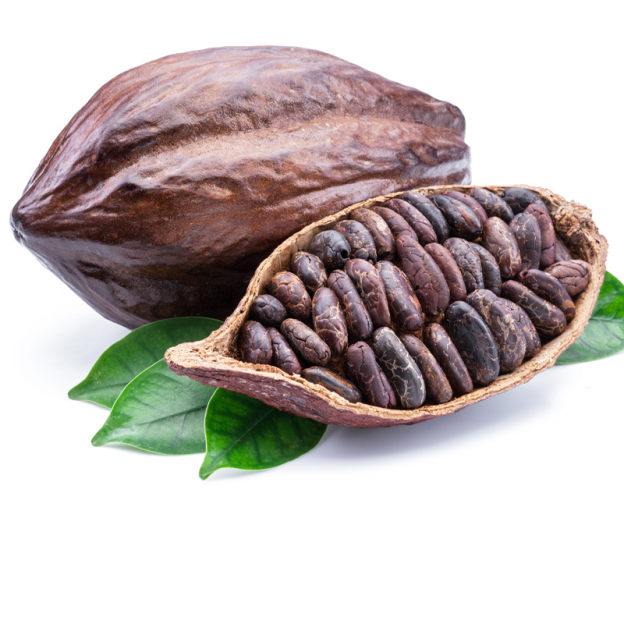 Cacao CO2 extract